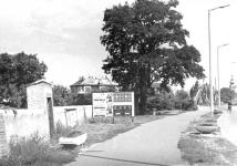 Az Ady Endre út egykor