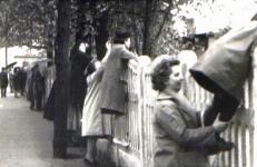 Életkép 1964-ből
