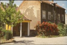 Függőkert a Templom utcában