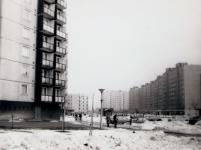 Juharfa/Felszabadulás utca