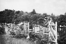 Lovasverseny 1969 nyarán