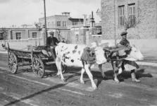 Pillanatkép a Kőszegi útról 1937-ből