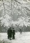 Várkerületi tél