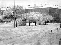 Téli részlet a Széchenyi térről