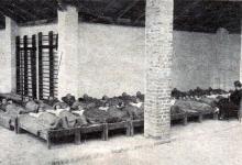Alvás az udvaron (illusztráció a Sopron anno archívumából.)