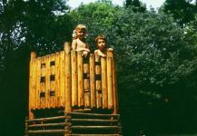 Az erdei játszótér kedvelt favára