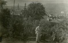 Egy Mühl a család kertjében