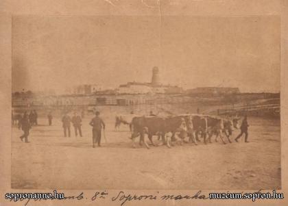 A Marhavásártér 1889-ben