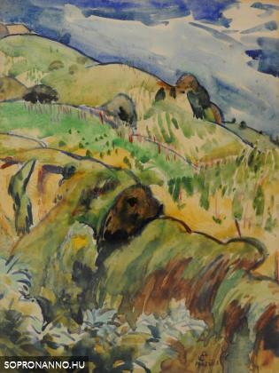 Mende Gusztáv: Tokaji hegyoldal