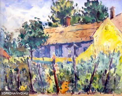 Régi ház szőlővel