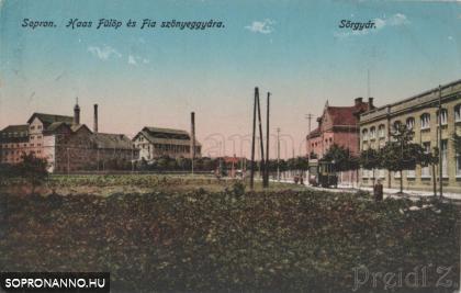 A Haas és Fiai gyára és a sörgyár