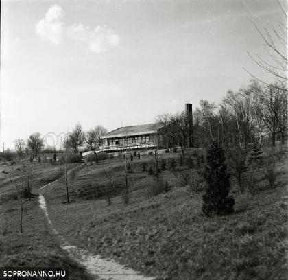 A Hubertus étterem 1970-ben