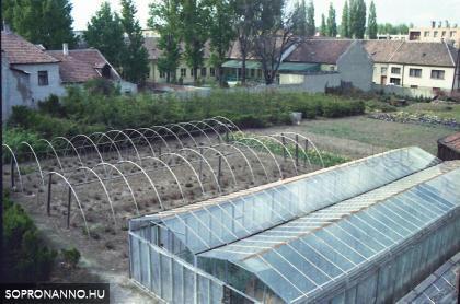 A Raffensperger kertészet