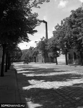Az Erzsébet utca