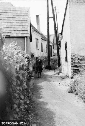 Bánfalva - 1968
