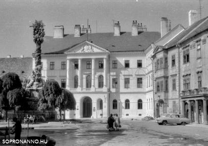 A Megyeháza, a Fabricius-ház és a Tábornok-ház, illetve a fákkal körülölelt Szentháromság-szobor