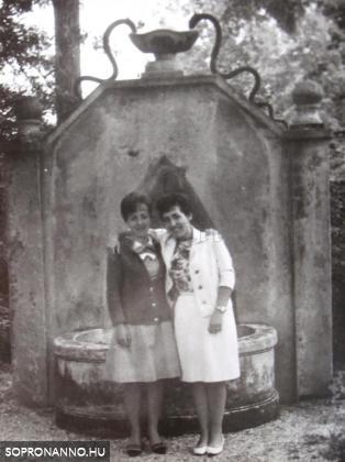 A kút a múzeum kertjében 1966-ban