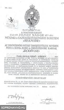 Pum Gyula diplomája