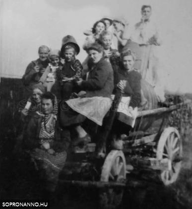1950. Vidám szüretelőkkel teli szekér a Hujpajeron