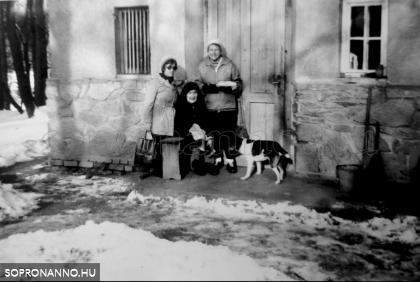 Ilonka néni a konyhaajtó előtt vendégeivel és Pöttyös kutyussal. Molnár Tibor felvétele, 1981. december 27.