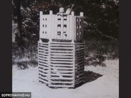 Az erdei játszótér favára 1972-ben