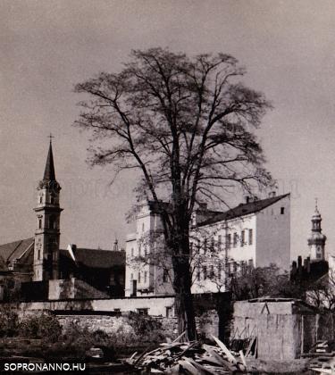 Árpád utca