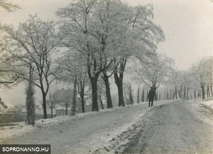 A Bécsi-domb télen