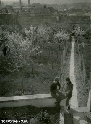 A Mühl-ház kertje