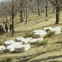 Emlékkövek a Szalamandra-tónál