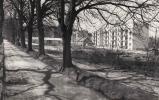A Hársfa sor 1971 táján