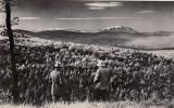 Kilátás a Várhelyről 1947-ben